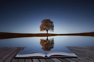 Tree reflection in the book