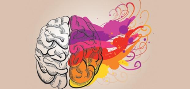 neuroplasticity3